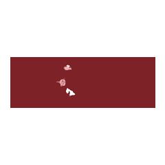 helo drummond